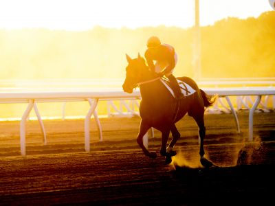 Racehorse and rider