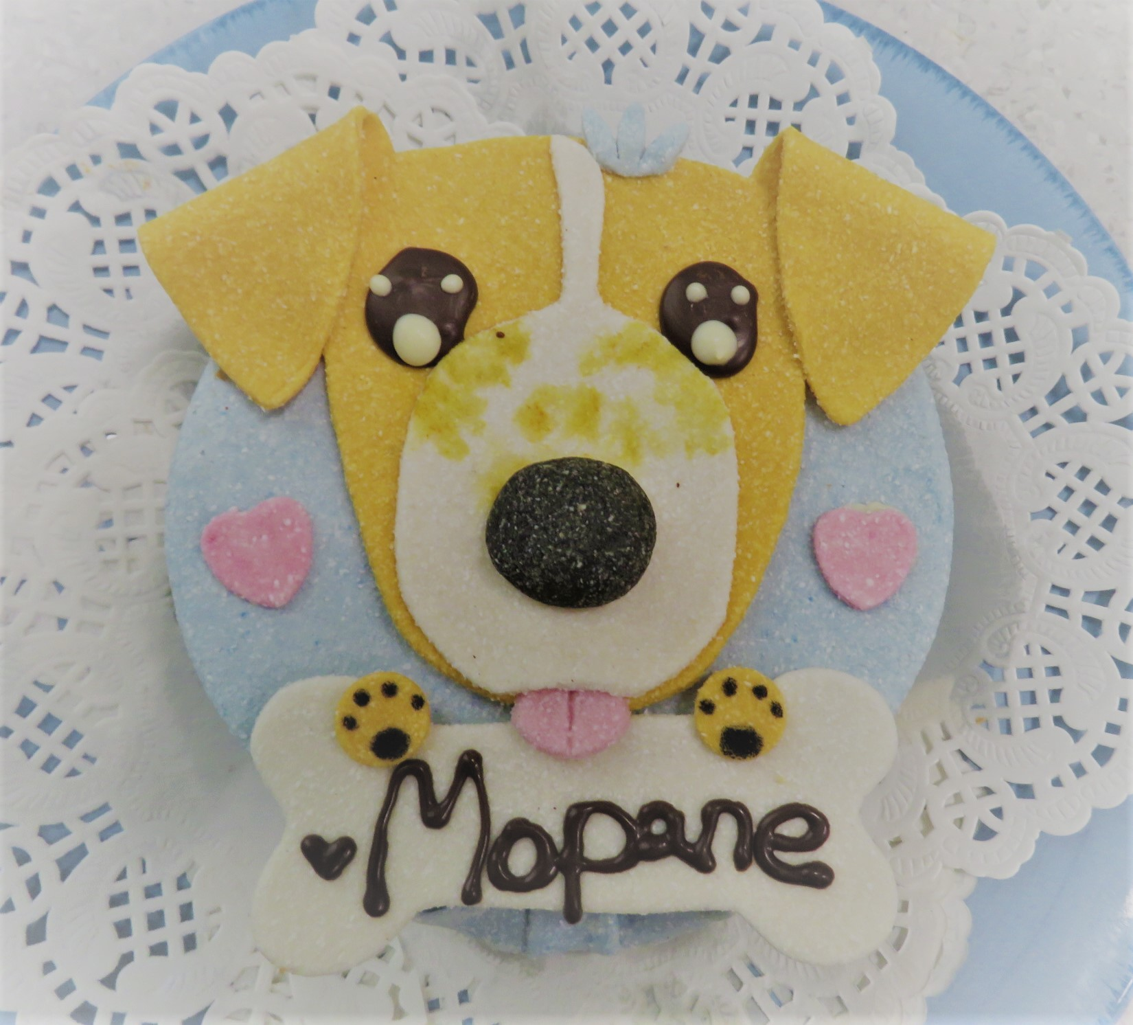 Edible cake topper for the cake to celebrate Mopane's 15th blood donation